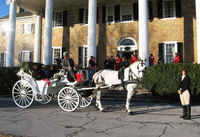 Holiday Horse Drawn Carriage Ride In the Heart of DC