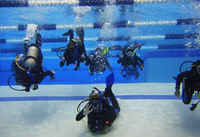 Dive Into an Introduction to Scuba Workshop